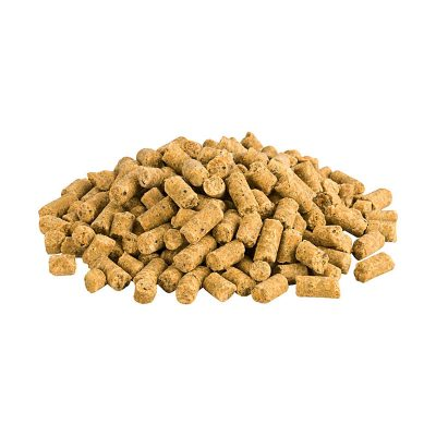 Terra-Pura Bio Vegani Nr. 1 veganes Trockenfutter Detail