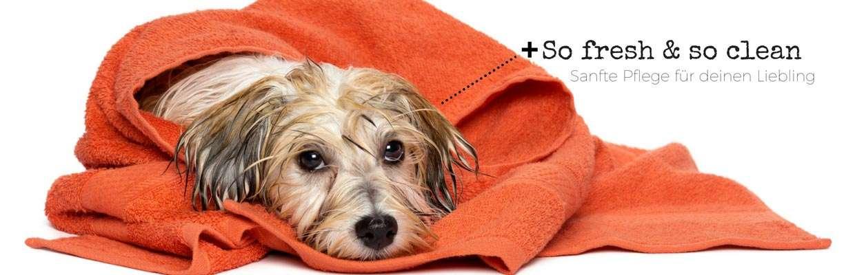 Sanfte Hundepflege | veganpaws