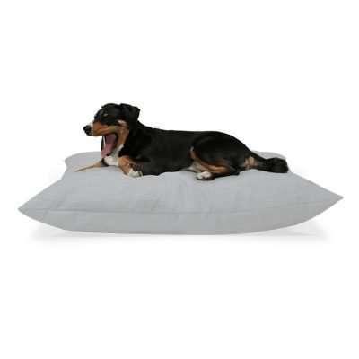 Buddy Hundekissen mit Momo Appenzeller Sennenhund Farbe Grau